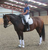 Dressage demonstration at Grenaby Estates Pony Club event