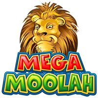 Another lucky winner on Microgaming's Mega Moolah Progressive Slot