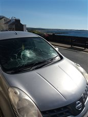 Motorist left with repair bill after windscreen damage
