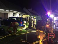Dog rescued after house fire in Port Erin