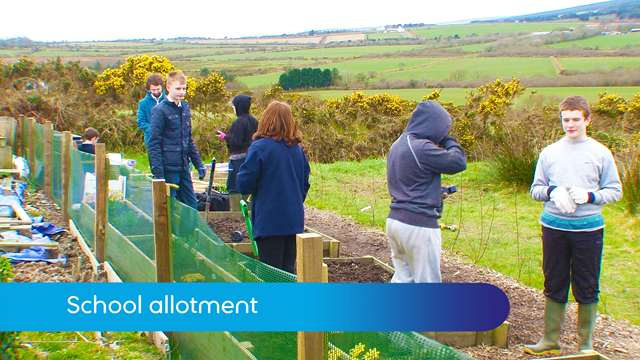 Preview of - School allotment