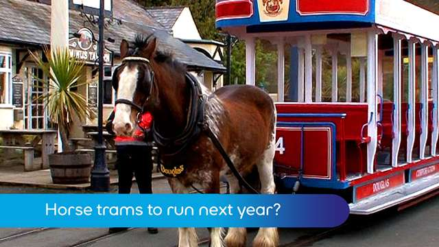 Preview of - Horse trams next year?