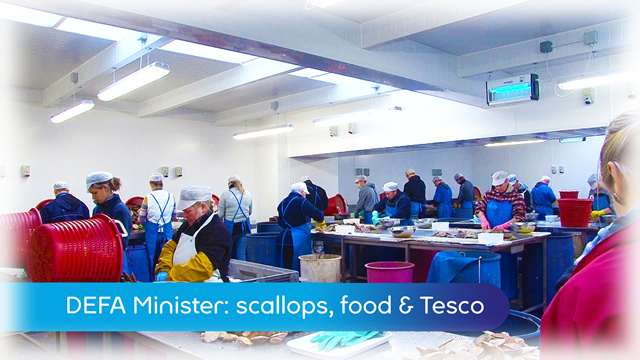 Preview of - Scallops, food & Tesco