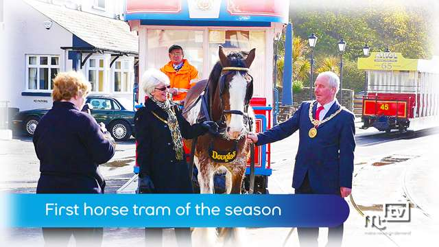 Preview of - First horse tram of the season