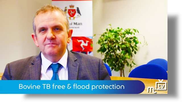 Preview of - TB & flood protection