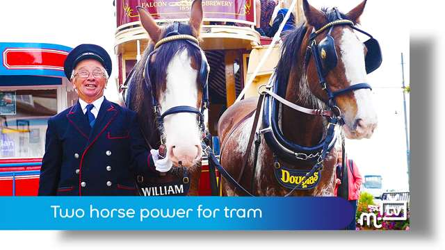 Preview of - Two horse power for tram