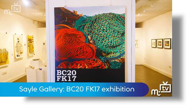 Preview of - Sayle Gallery: BC20 FK17 exhibition