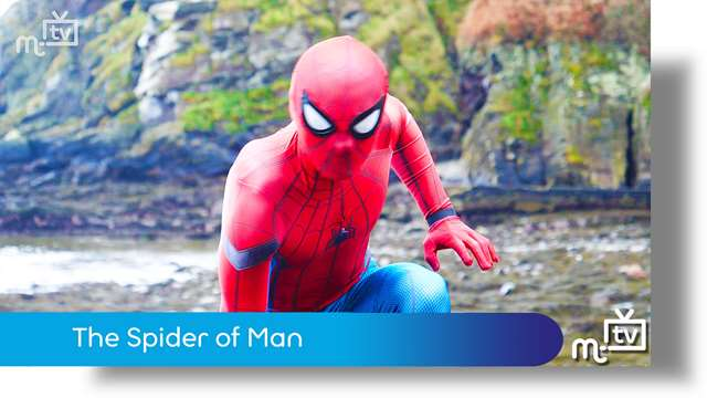 Preview of - The Spider of Man