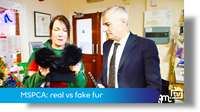MSPCA: fake vs real fur