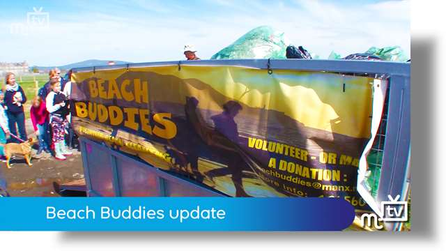 Preview of - Beach Buddies update