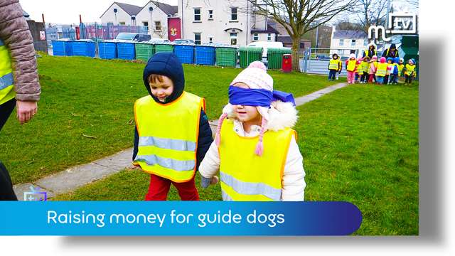 Preview of - Raising money for guide dogs