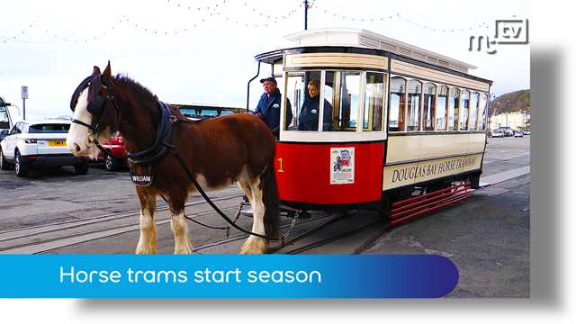 Preview of - Horse trams start 2018 season
