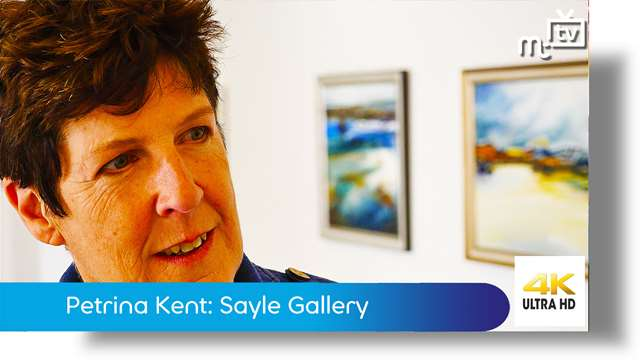 Preview of - Petrina Kent exhibition: Sayle Gallery