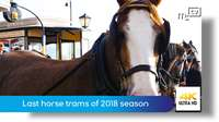 Last horse trams of 2018 season
