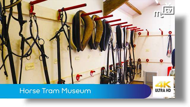 Preview of - Horse Tram Museum