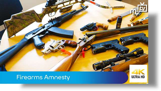 Preview of - Firearms Amnesty