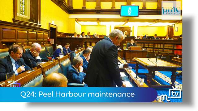 Preview of - Q24: Peel Harbour maintenance