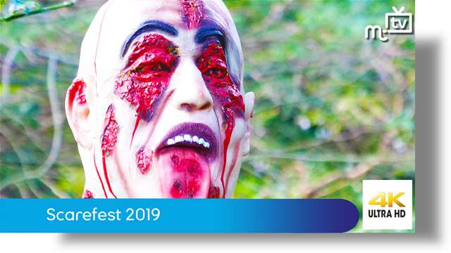 Preview of - Scarefest 2019