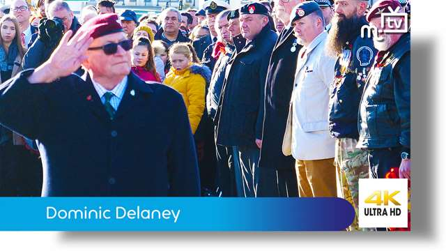 Preview of - Dominic Delaney