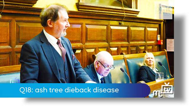 Preview of - Q18: ash tree dieback disease